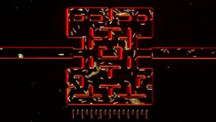 Mikroskopijny Pac-Man