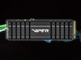 Patriot Viper VPN100 256 GB