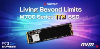 BIOSTAR M700 1 TB