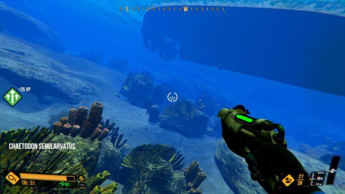 deep diving simulator 12